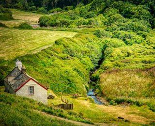 A pisze vakond és a domb